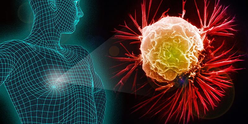 دلایل سرطان، پیشگیری و درمان